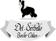 Del Serbello Kennel